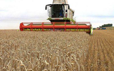 Ne csak vess, arass is – pénzügyi tipptár gazdálkodóknak! (1.)